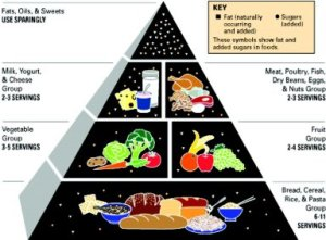 92 food pyramid